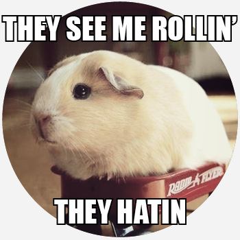 lively They See Me Rollin memes