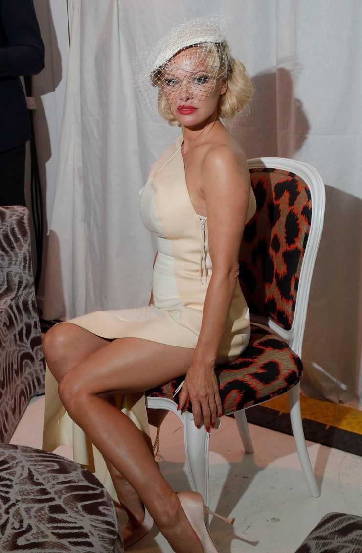 pamela anderson sexy body