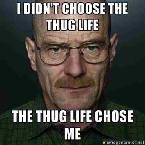 rib-tickling Thug life memes