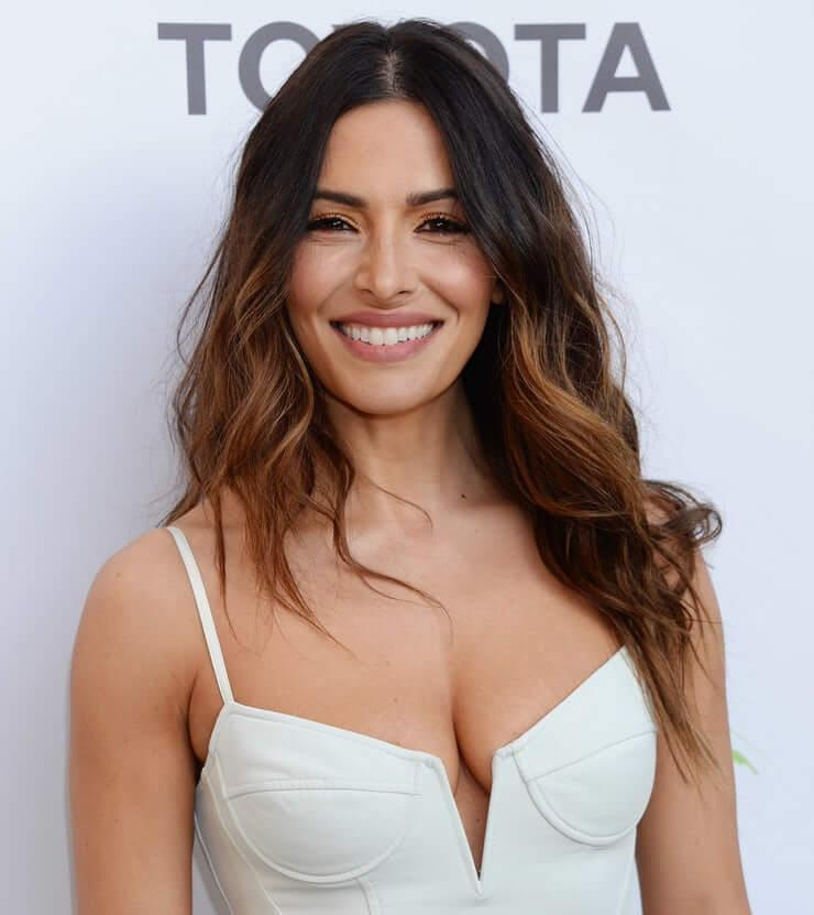 sarah shahi sexy smile