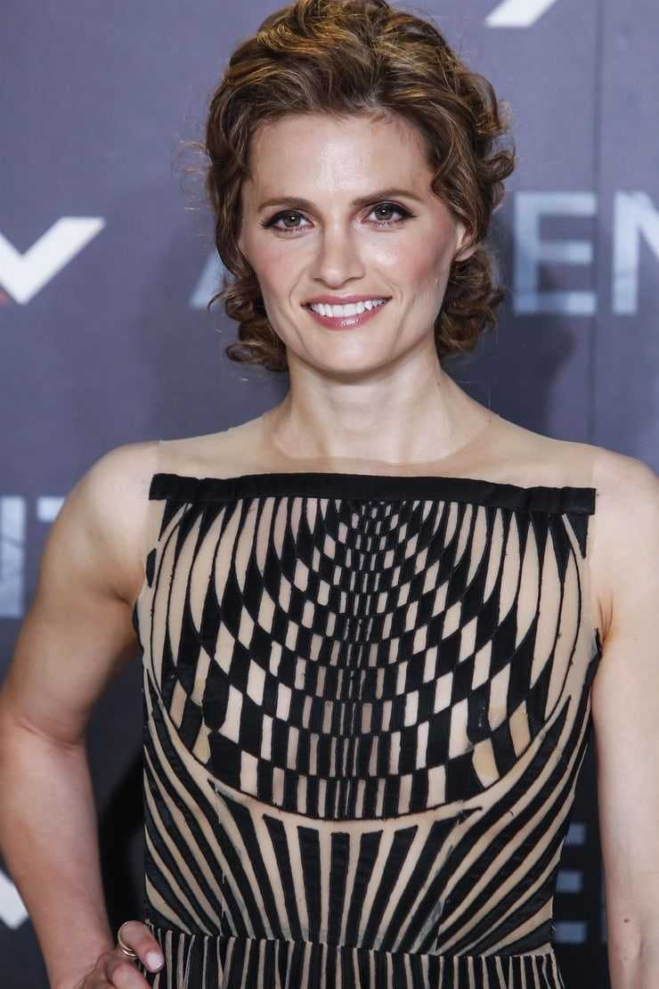 Andrea Thompson Hot 61 sexy pictures of stana katic exhibit that she is as hot