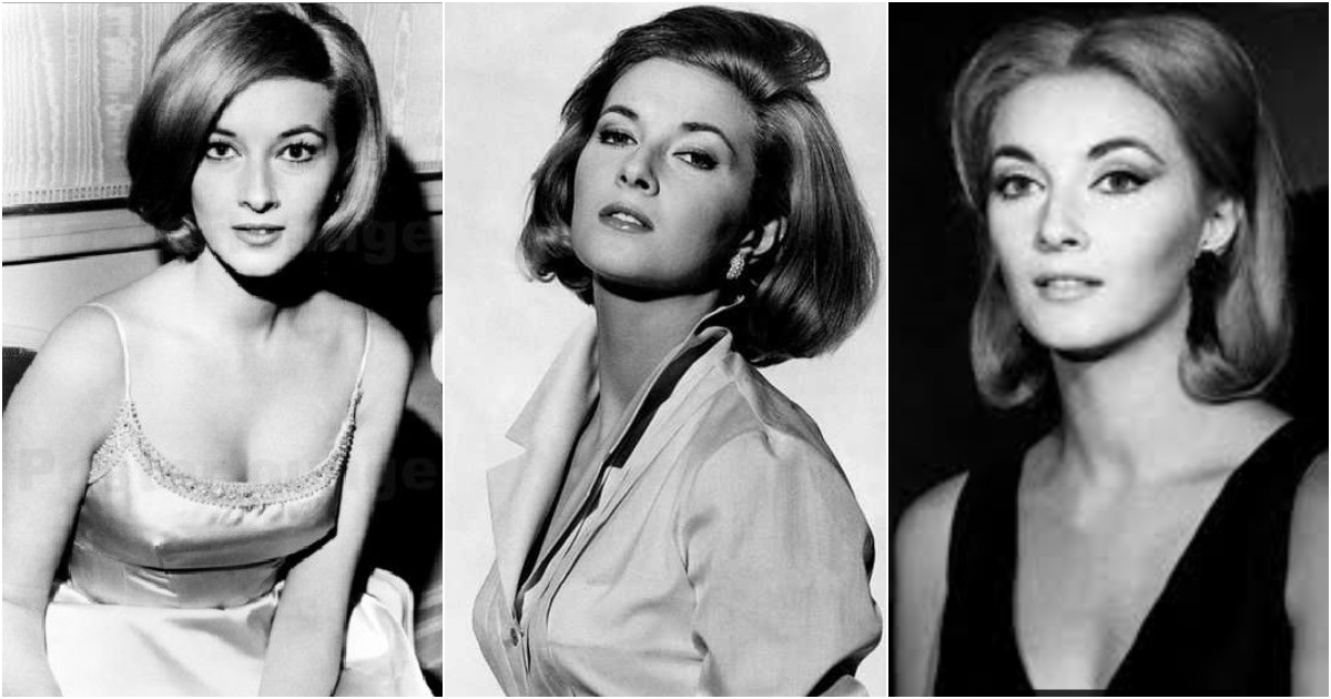 61 Daniela Bianchi Sexy Pictures Are Incredibly Excellent
