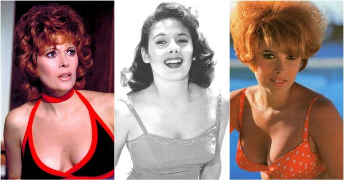 61 Jill St. John Sexy Pictures Demonstrate That She Is As Hot As Anyone Might Imagine