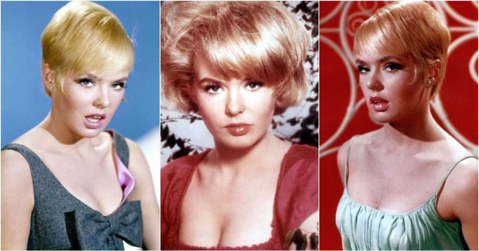 61 Joey Heatherton Sexy Pictures Which Are Incredibly Bewitching