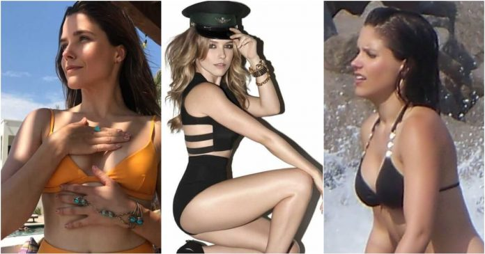 61 Sophia Bush Sexy Pictures Are An Appeal For Her Fans