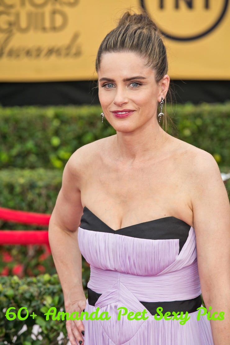Amanda Peet Hot Pictures 61 amanda peet sexy pictures that will fill your heart with