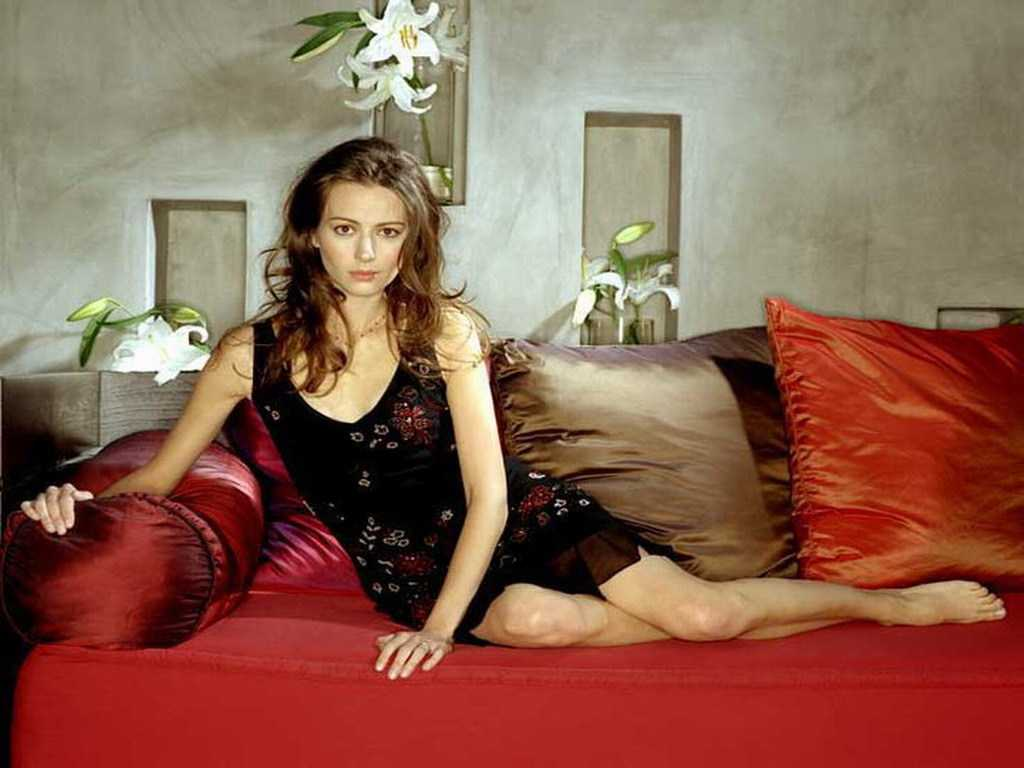 61 Amy Acker Sexy Pictures Which Make Certain To Prevail