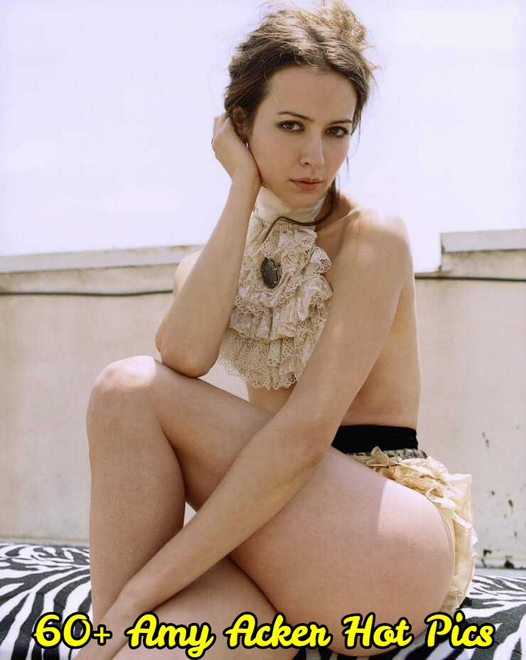 61 Amy Acker Sexy Pictures Which Make Certain To Prevail Upon Your