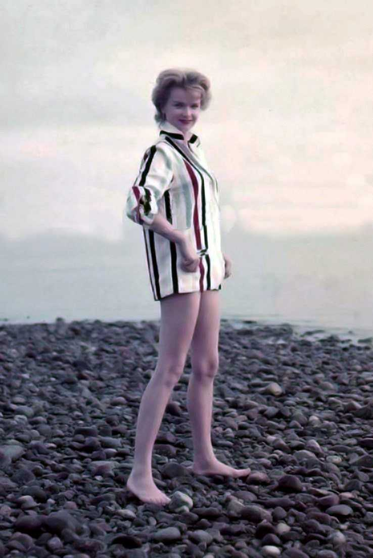 Anne Francis dress