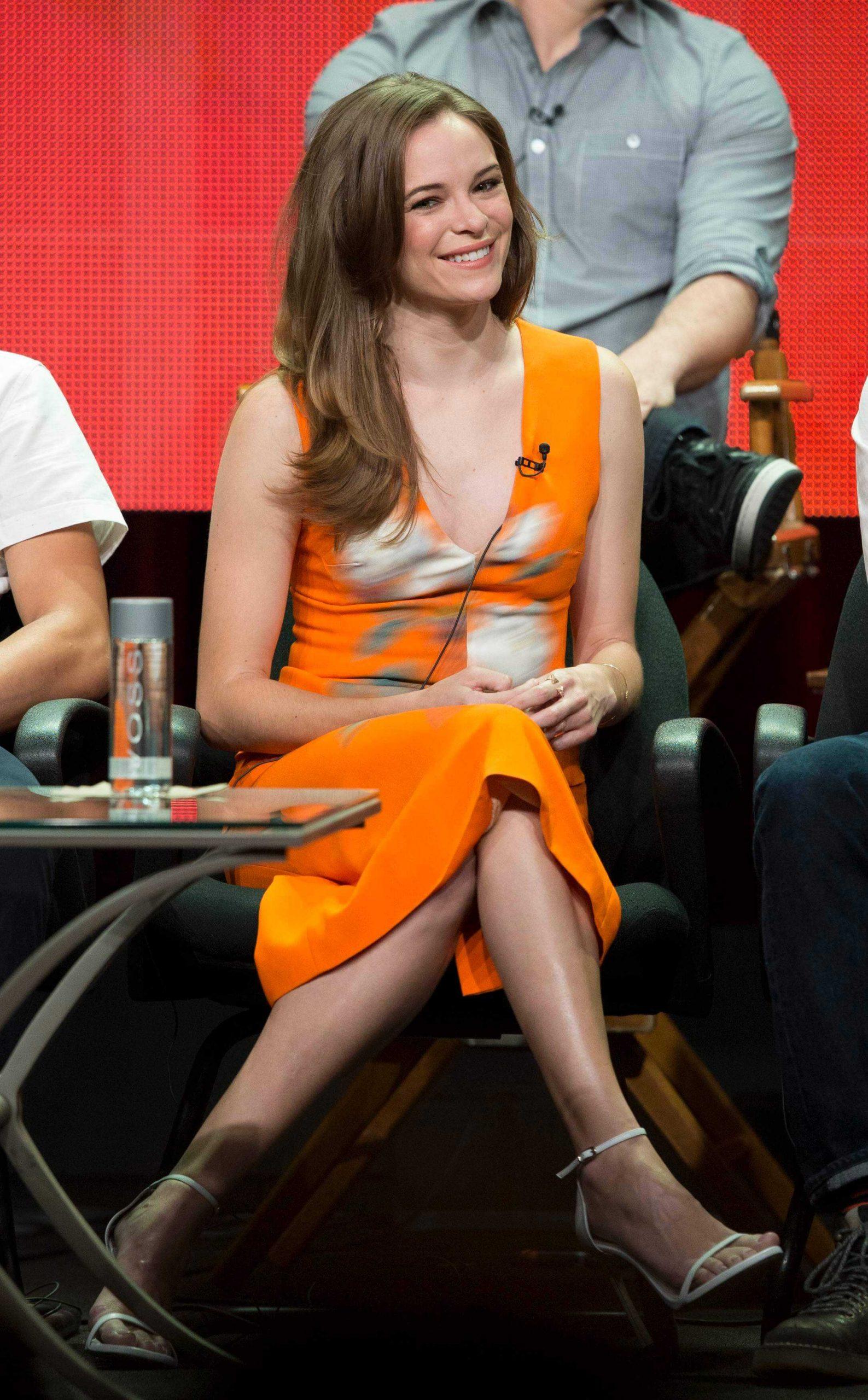 Danielle Panabaker dress