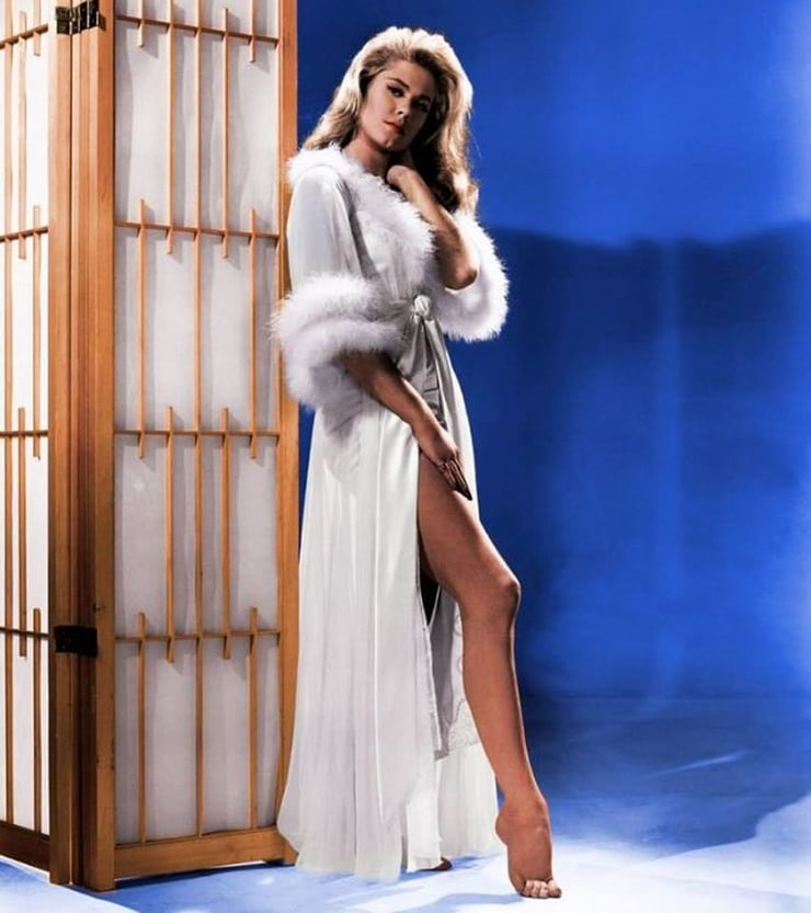 Elizabeth Montgomery hot legs