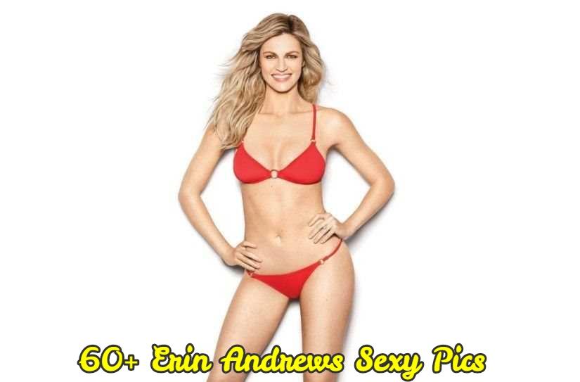 Erin Andrews lingerie