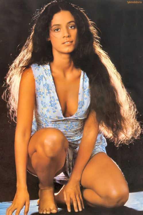 Sônia Braga sexy