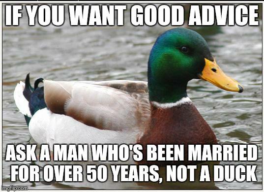 amusing Actual Advice Mallard memes