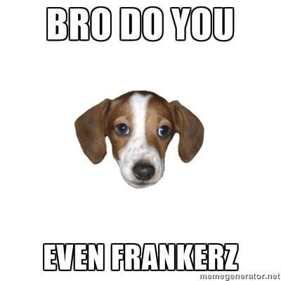 amusing FrankerZ memes