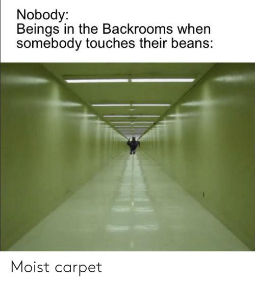 amusing The Backrooms memes