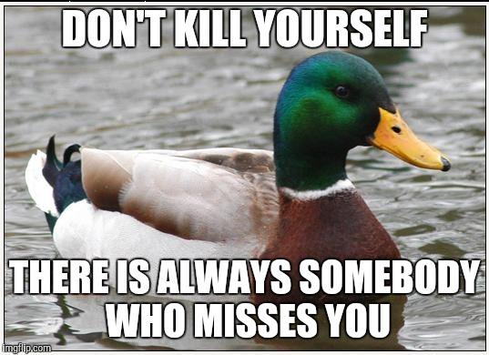 chucklesome Actual Advice Mallard memes