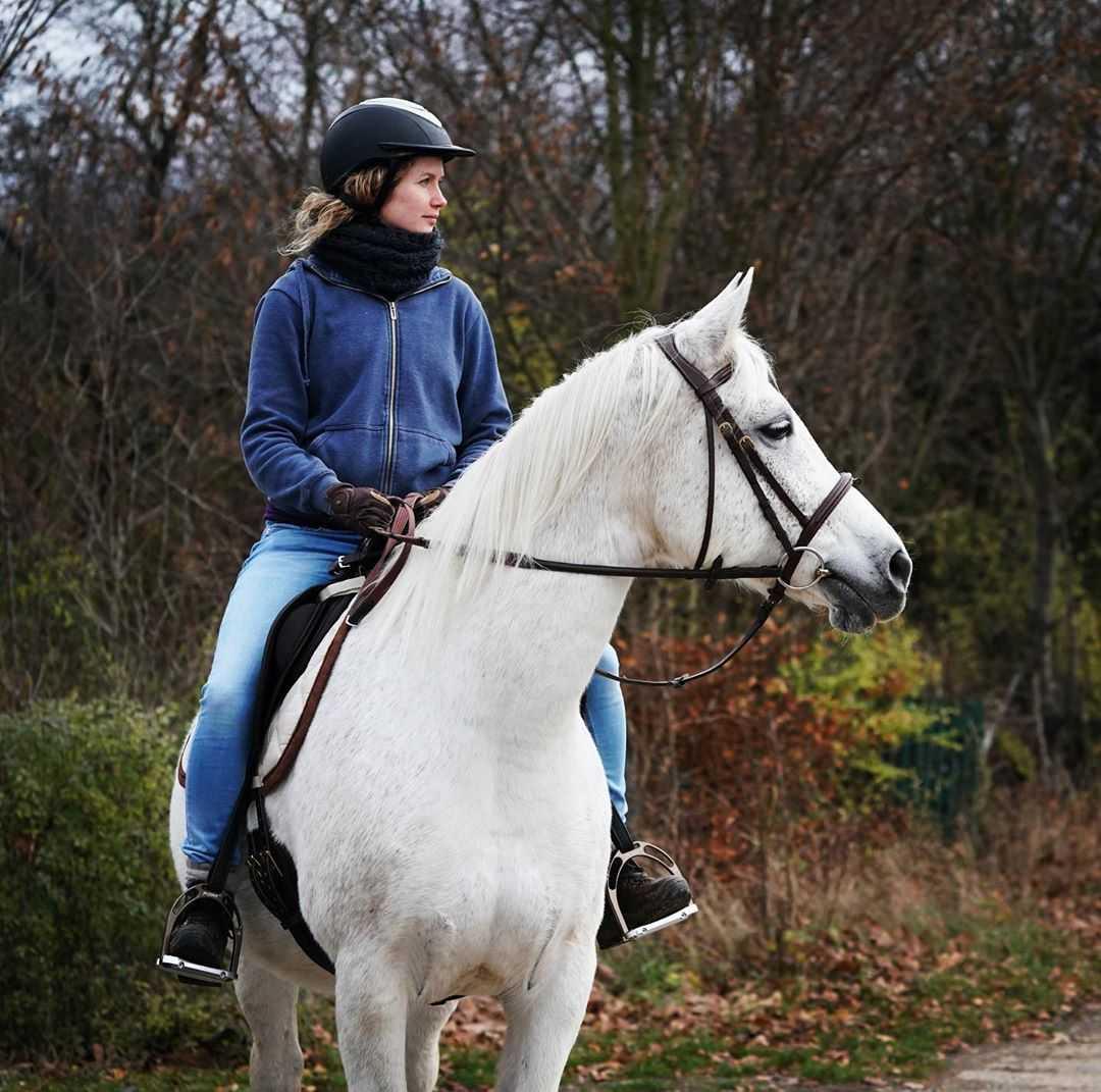 cornelia groschel horse riding