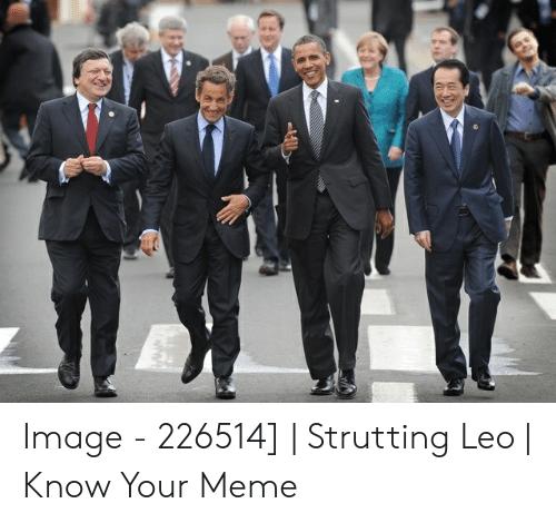entertaining Strutting Leo memes