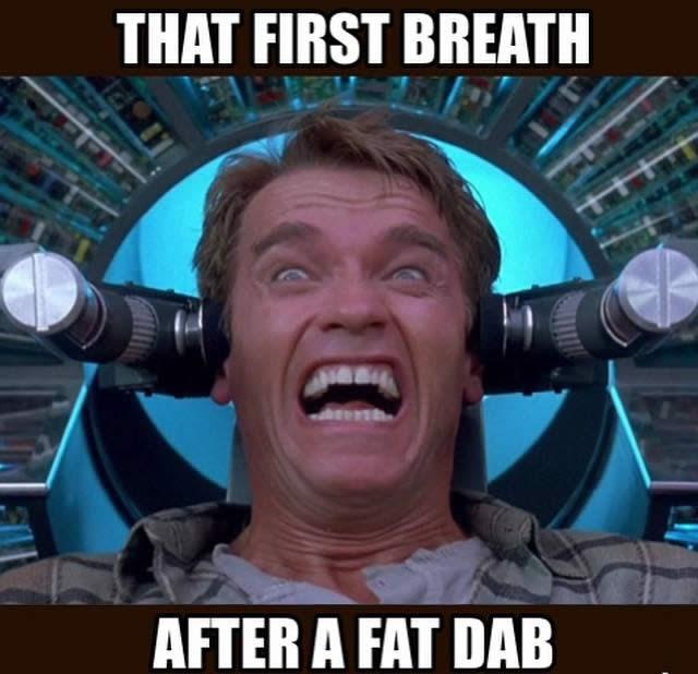 high-spirited The Dab memes