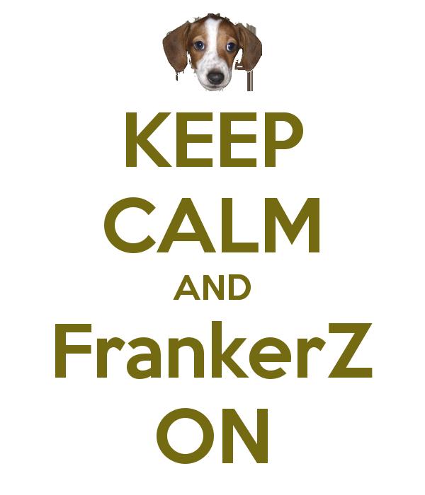 lively FrankerZ memes