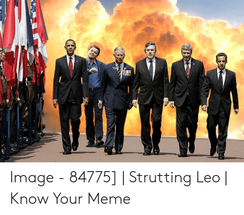 rib-tickling Strutting Leo memes