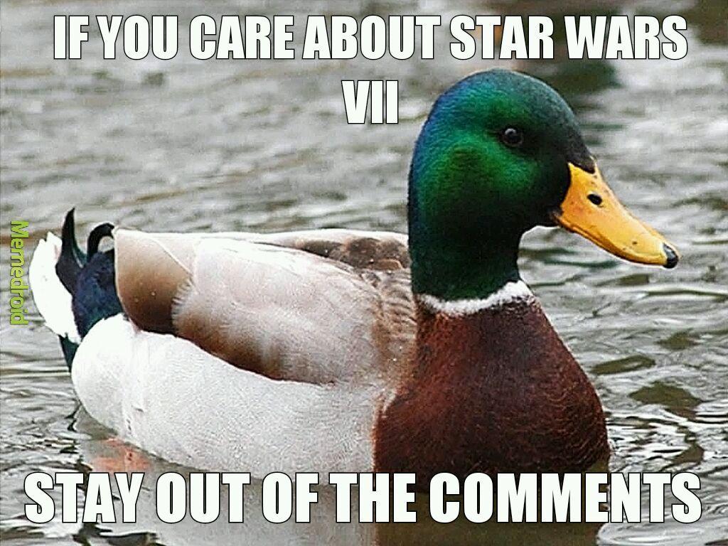 sparkling Actual Advice Mallard memes