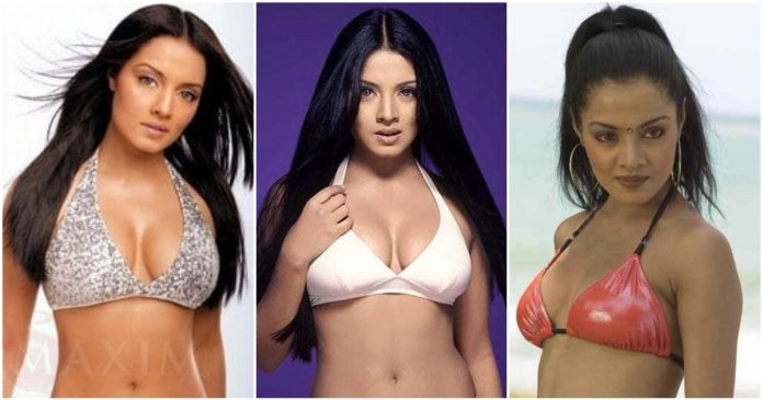 61 Celina Jaitly Sexy Pictures Are Going To Liven You Up