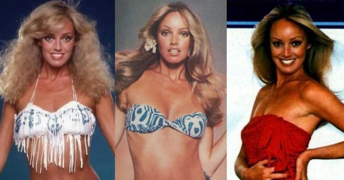 61 Susan Anton Sexy Pictures Are Blessing From God To People