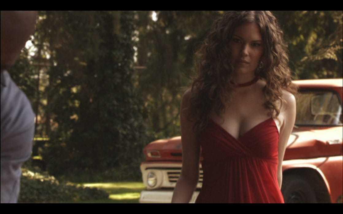 Anna Van Hooft hot cleavage
