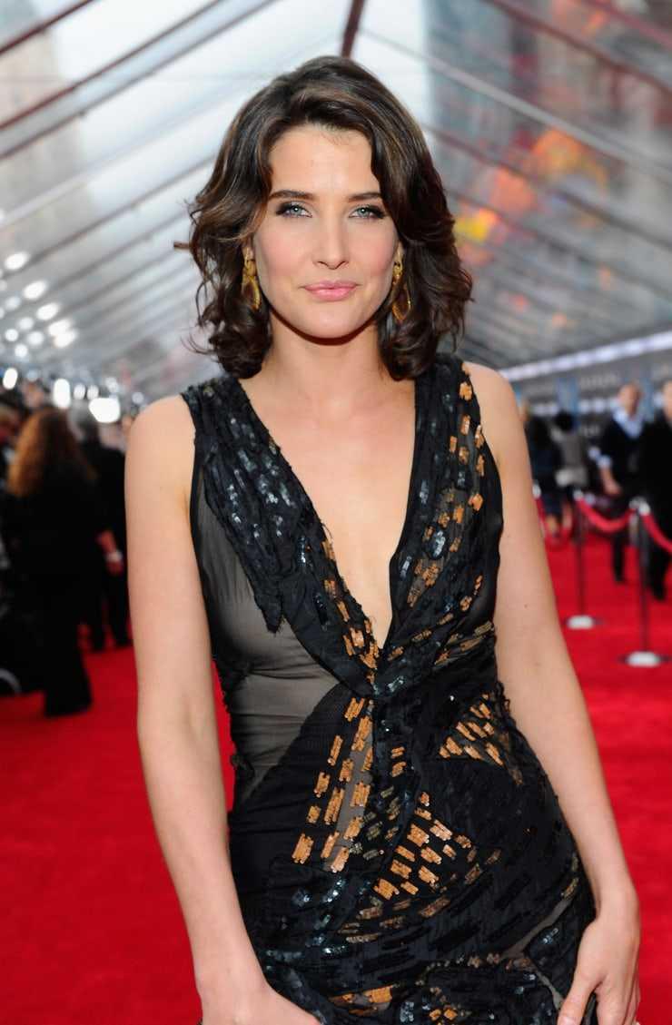Cobie Smulders hot cleavage