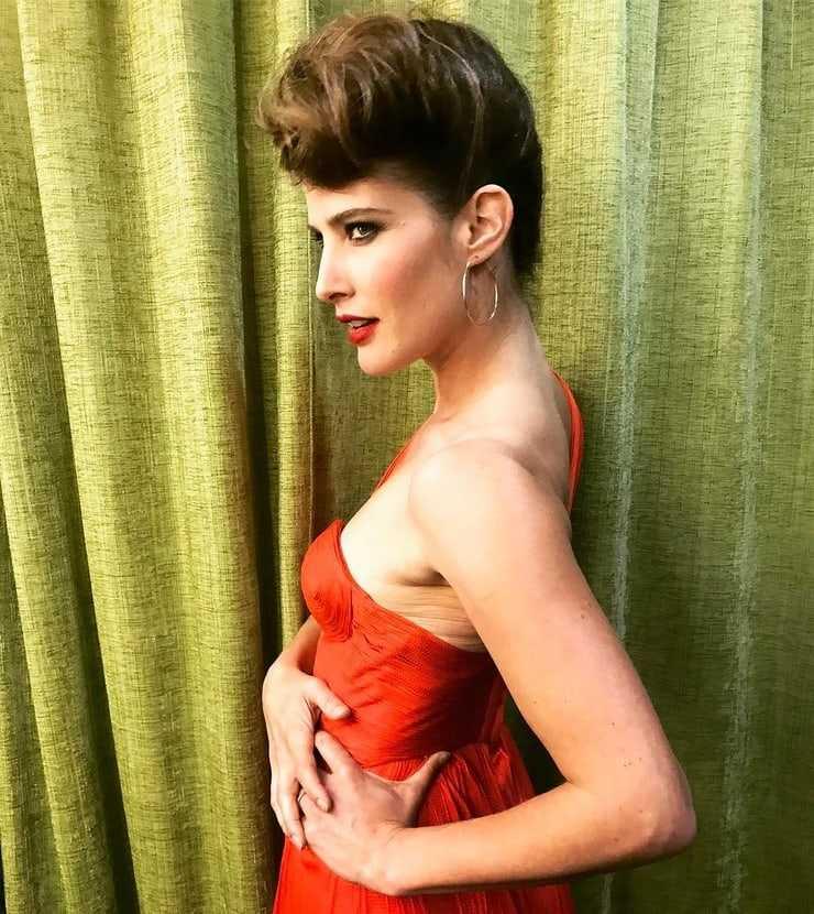 Cobie Smulders stunning (2)