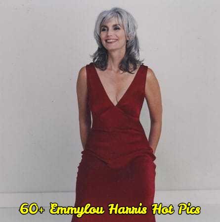 Emmylou Harris dress