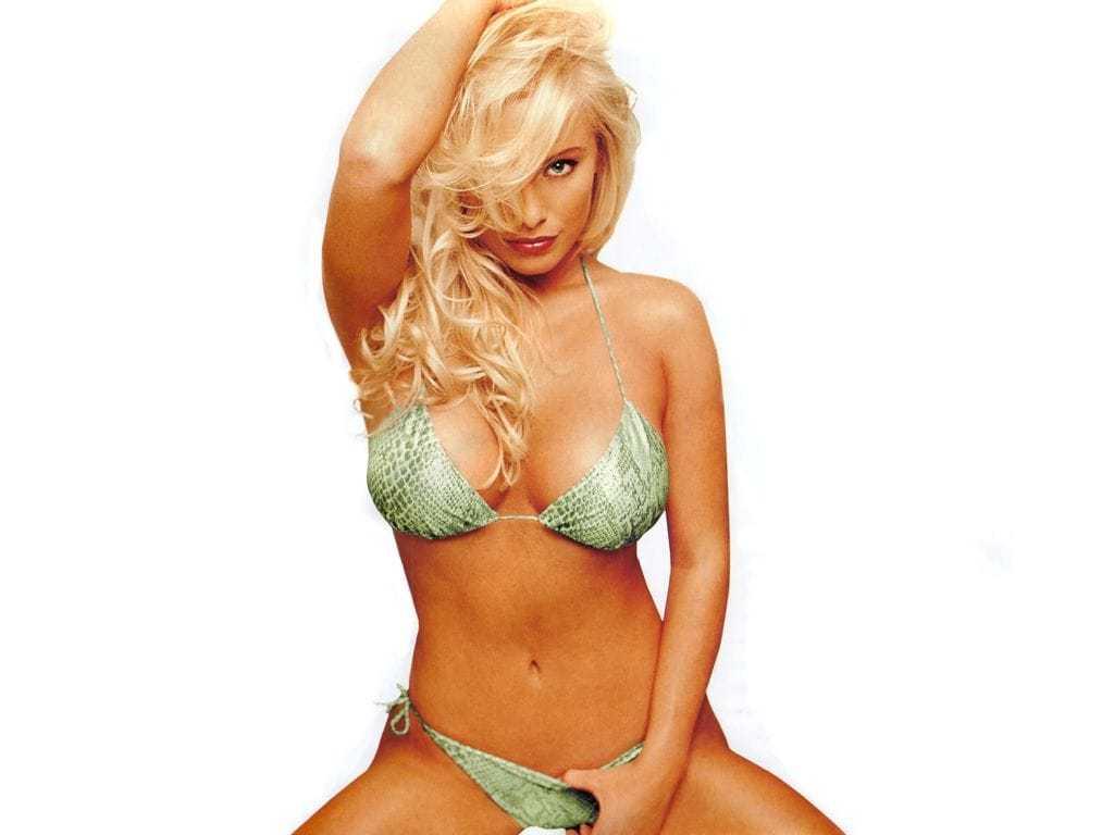 Jaime Bergman sexy bikini pic