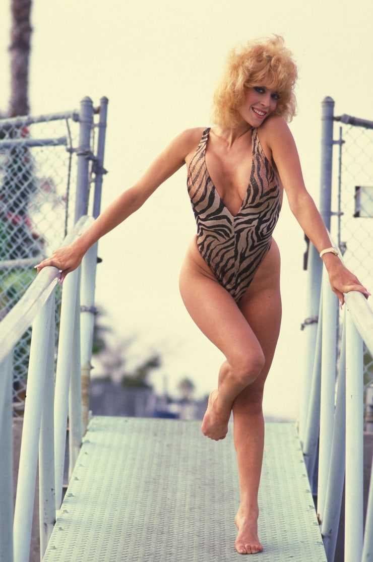 Judy Landers swim suit