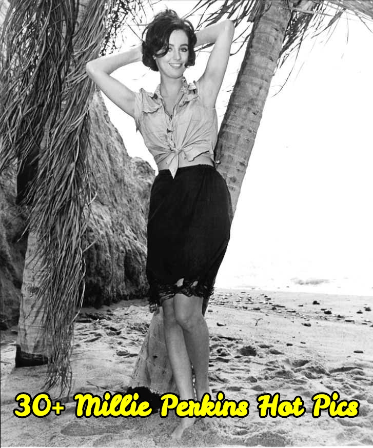 Millie Perkins hot pics