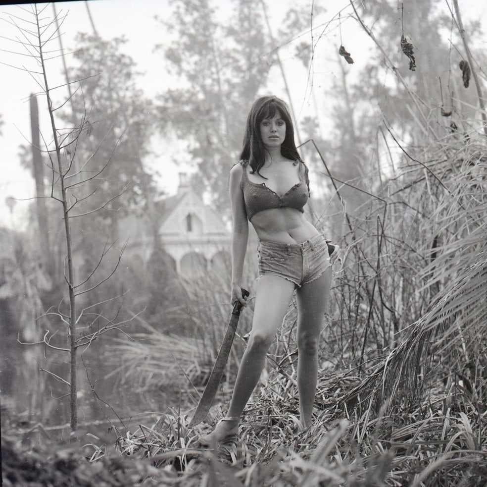Phyllis Davis bikini pictures