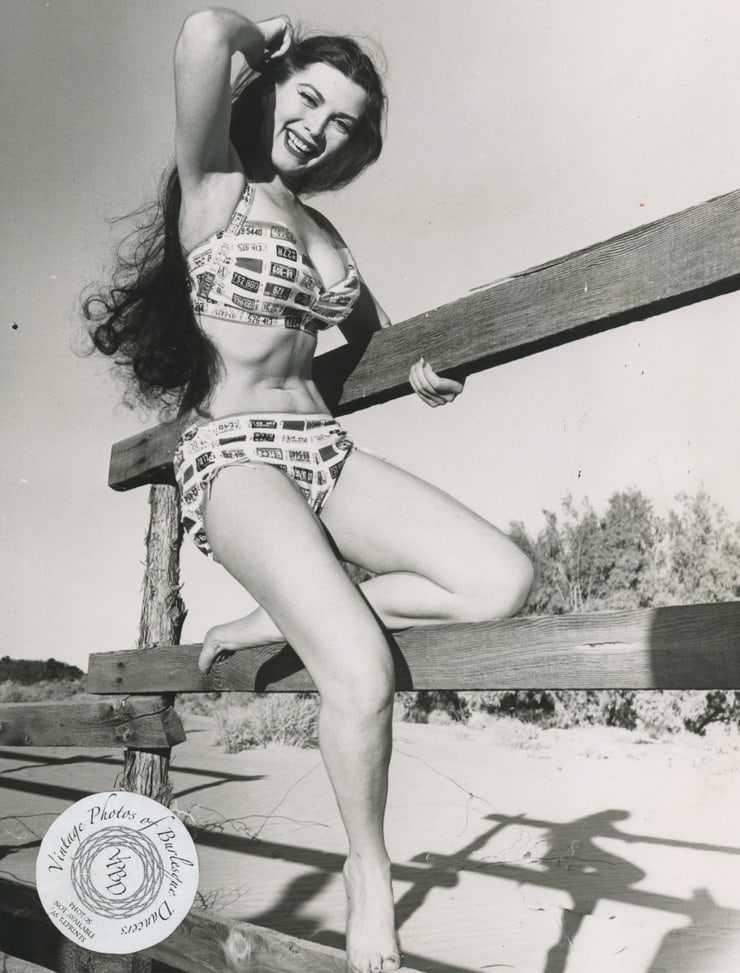 Sherry Britton hot legs pic
