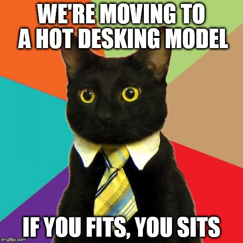 animated Business Cat memes