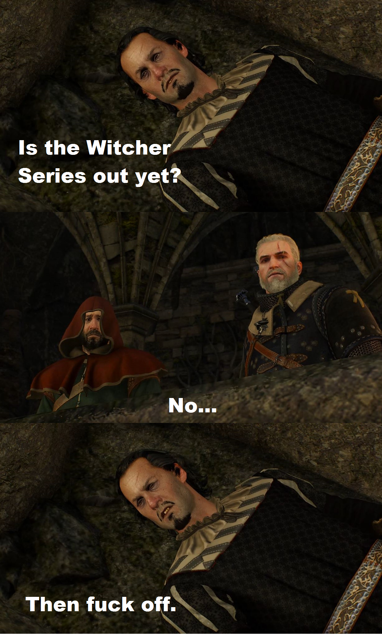 animated Witcher Memes