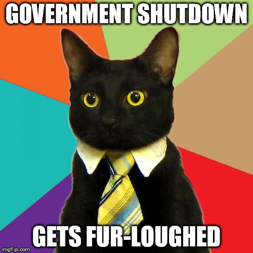cheerful Business Cat memes