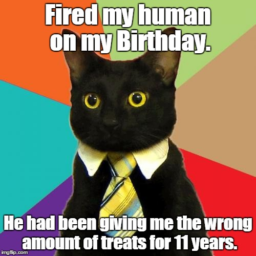 chucklesome Business Cat memes