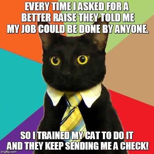 droll, Business Cat memes