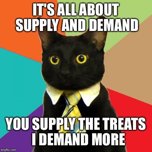 entertaining Business Cat memes