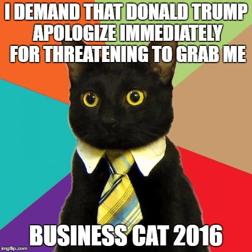 humorous Business Cat memes