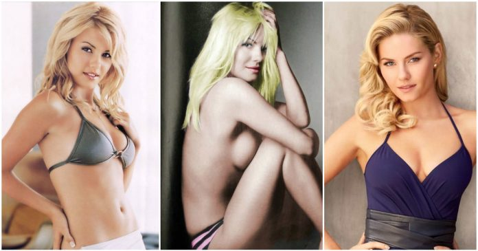 61 Elisha Cuthbert Sexy Pictures Which Will Leave You Amazed And Bewildered