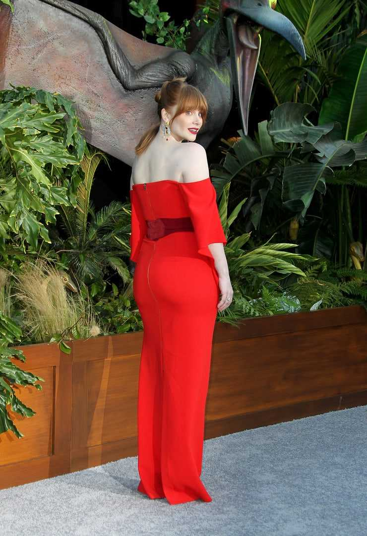 Bryce Dallas Howard stunning