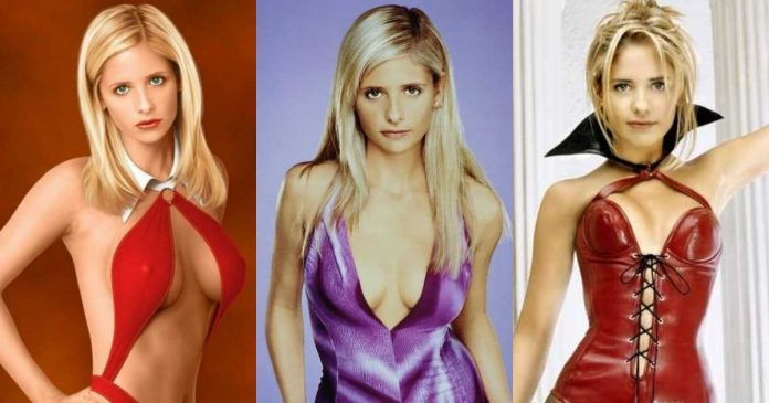 61 Sarah Michelle Gellar Sexy Pictures Which Will Shake Your Reality