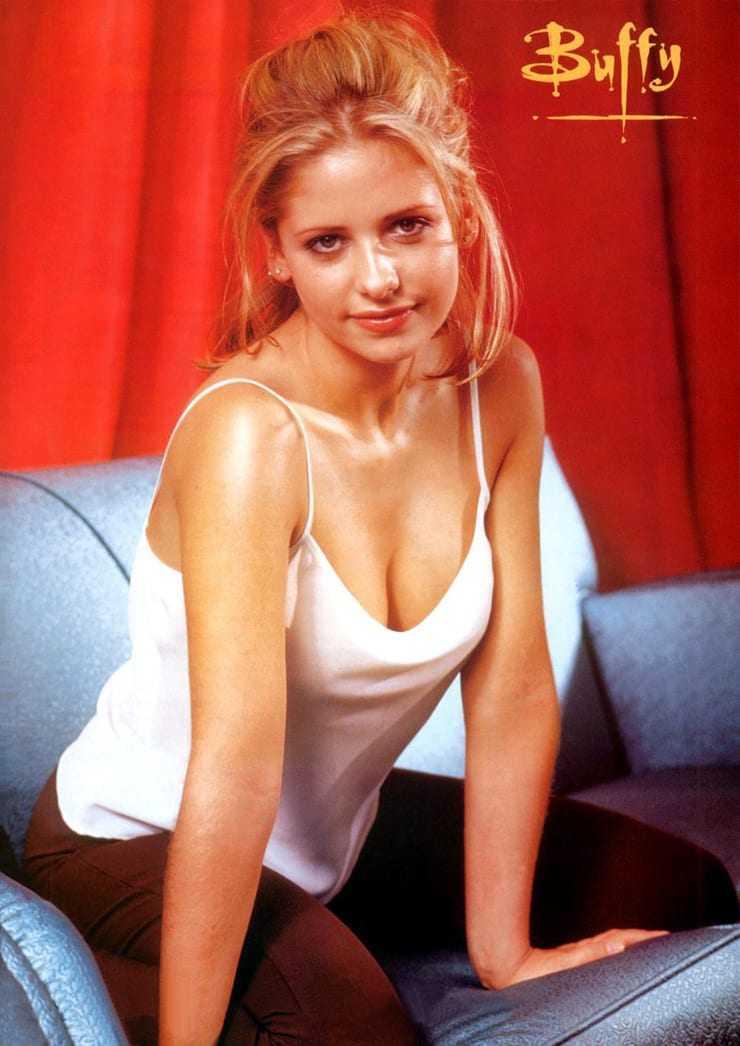 Sarah Michelle Gellar hot cleavage