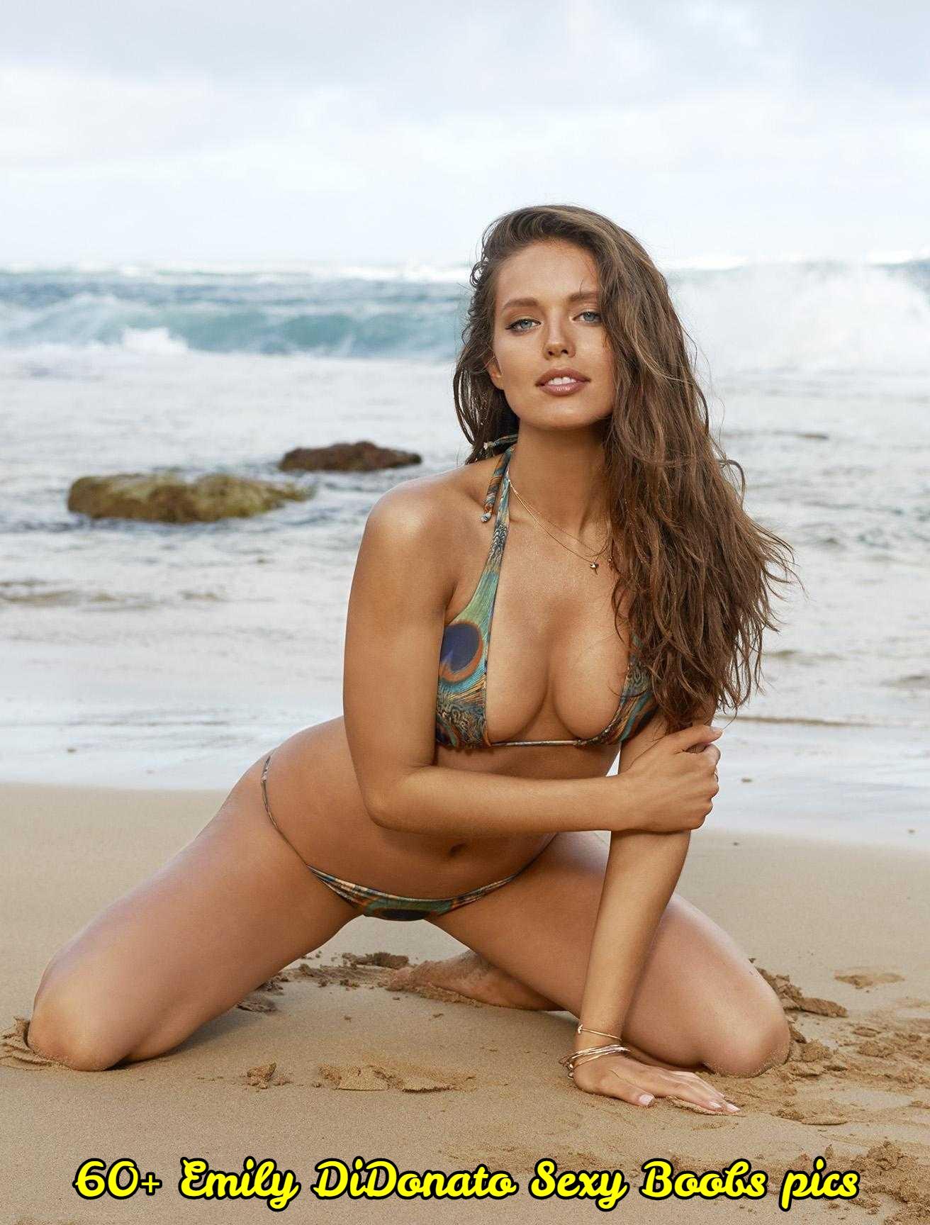 Emily DiDonato sexy pics